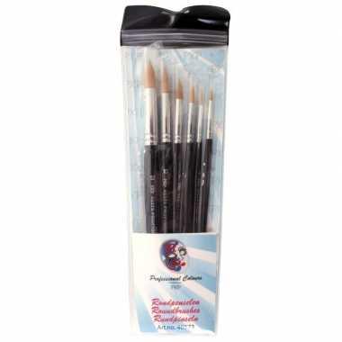 6 ronde schmink penselen set synthetisch