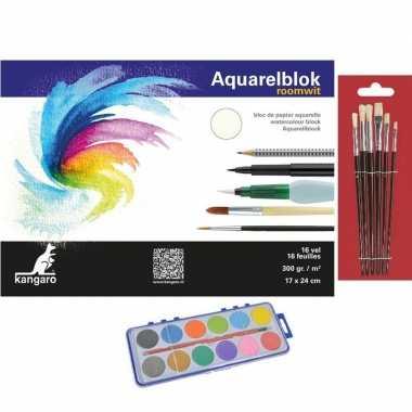 Schilderen waterverf set 7 kwasten aquarelblok 24 bij 17 10199757
